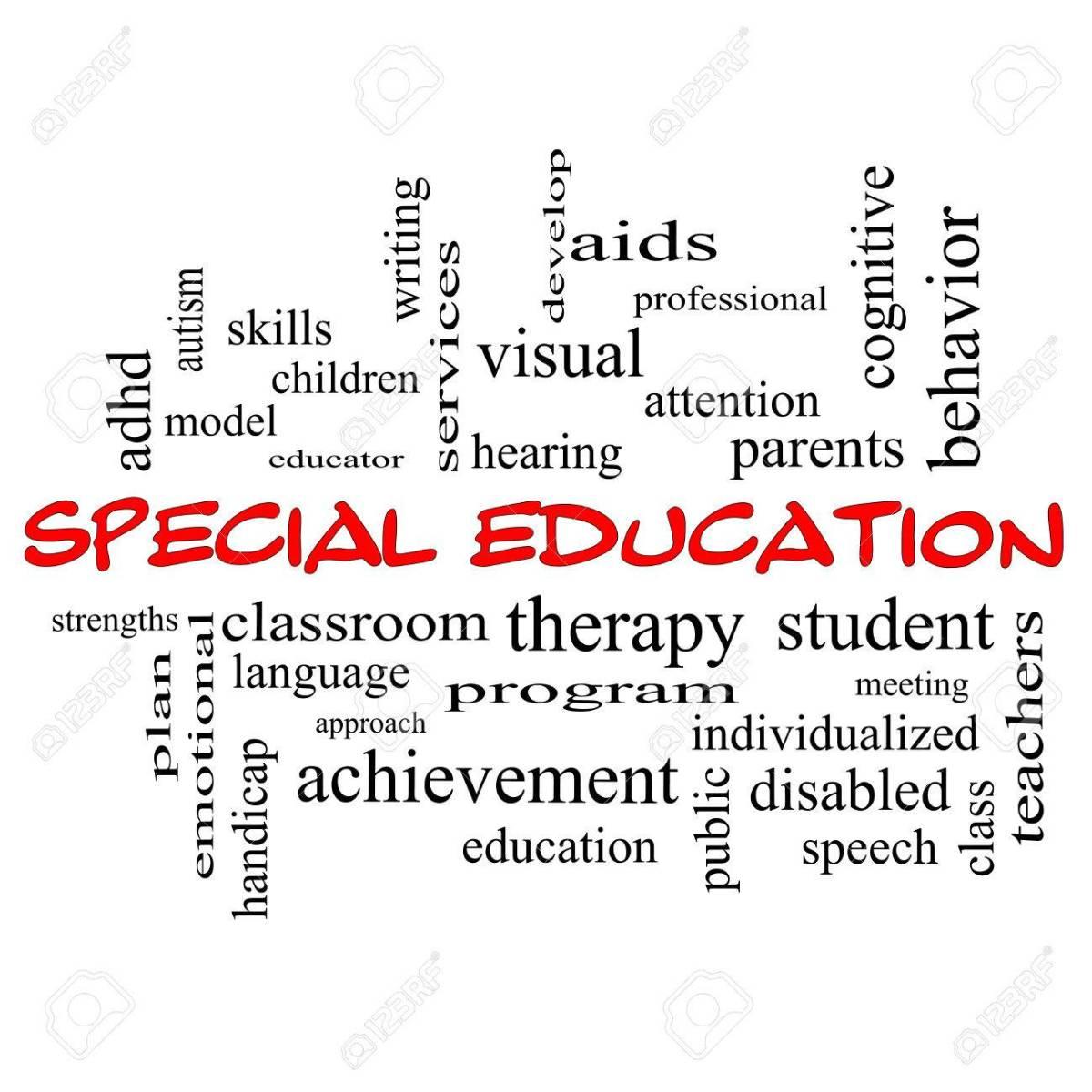 """Should """"Special Schools""""Close?"""